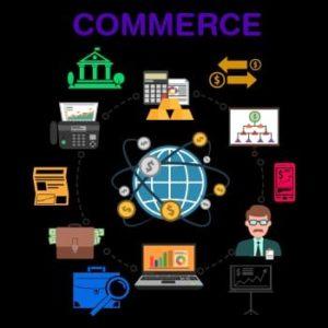 Career in commerce